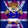 Broxi Bear 1873