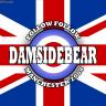 Damsidebear